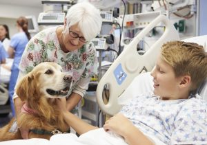 Visiting Hospitals