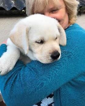 Konnar training for Canine Concern